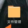 手机腾讯视频文件管理